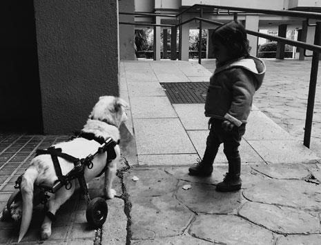 •Ana Navas Macías. Tercer premio, por la fotografía 'Mamá, ¿por qué dices que es diferente?'