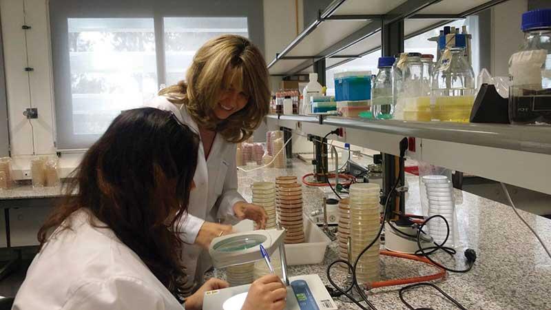 La Universidad de Extremadura colabora con Cicytex en acciones de investigación. Grada 123