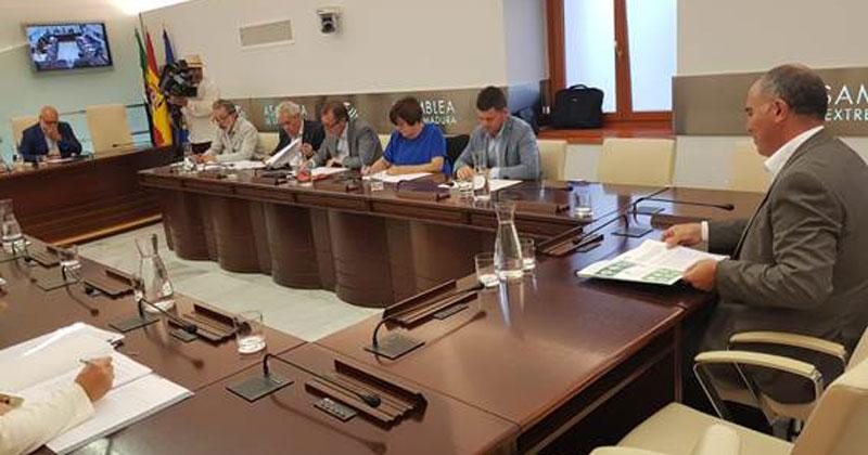 Plena inclusión defiende el turismo accesible en la Asamblea de Extremadura