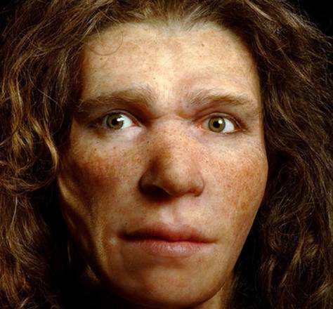 Neandertal JCP