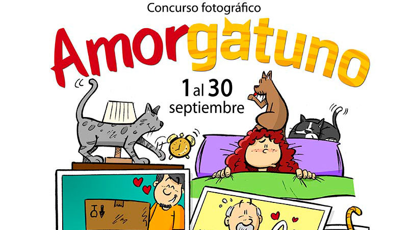 El Corte Inglés convoca el concurso de fotografía 'Amor gatuno'