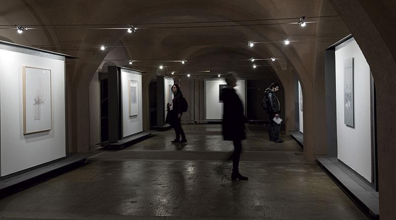 'Transvisible'. Lou Germain. Arte