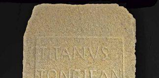 Los nombres de nuestros antepasados: Tongio. Grada 132. Arqueología