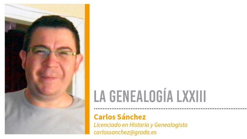 Genealogía LXXIII. Grada135