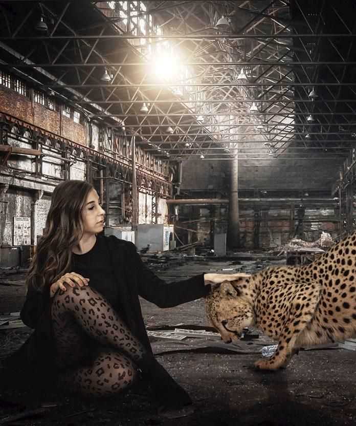 'Mi yo animal'. Grada 135. Fotografía