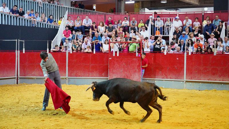 Finaliza una nueva edición de Ecuextre con Badajoz como centro de atención del toro y el caballo