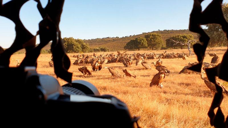 Ocho blogueros y fotógrafos especializados viajan por la provincia de Cáceres para conocer el Tajo Internacional