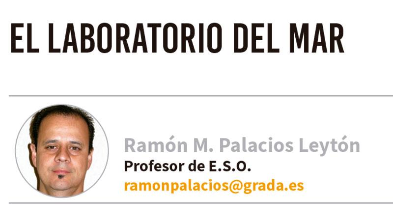 El laboratorio del mar. Grada 136. Ramón Palacios