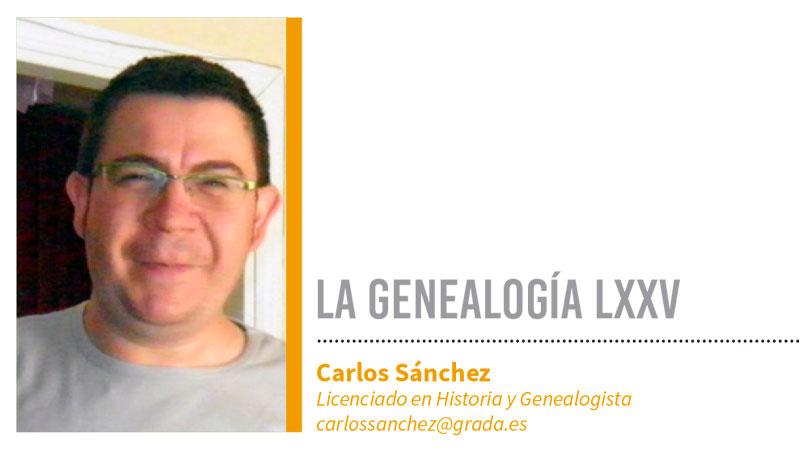 Genealogía LXXV. Grada 137