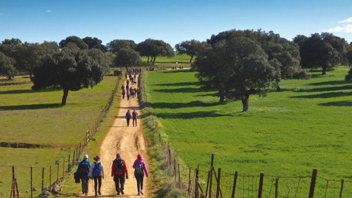 La Diputación de Cáceres desarrolla un proyecto de promoción de la Vía de la Estrella. Grada 137