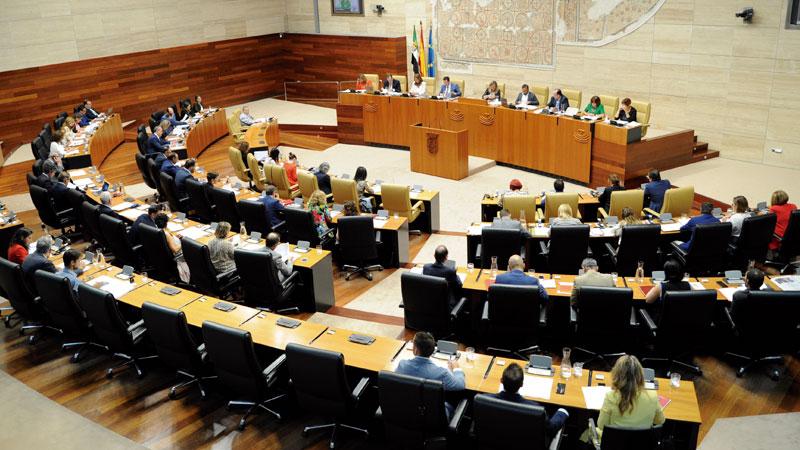 La Ley del Voluntariado es aprobada por unanimidad. Grada 138. Asamblea de Extremadura