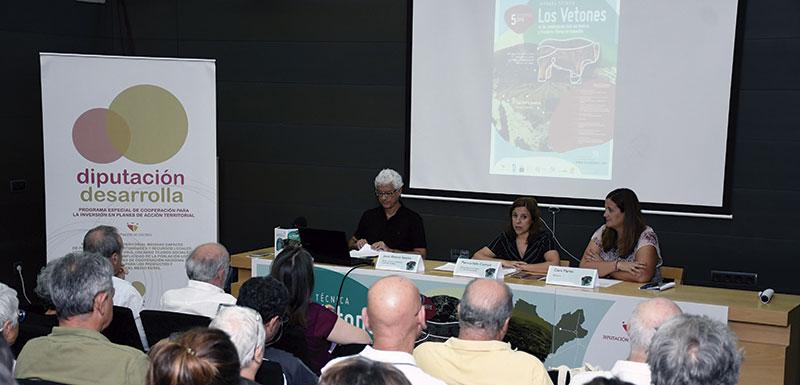 La Diputación de Cáceres promociona la cultura vetona. Grada 138