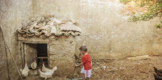 La Diputación de Cáceres da a conocer los ganadores del Premio fotográfico 'Señas de identidad'
