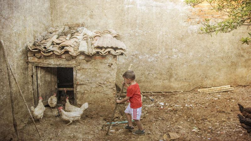 Premios fotográficos 'Señas de identidad'