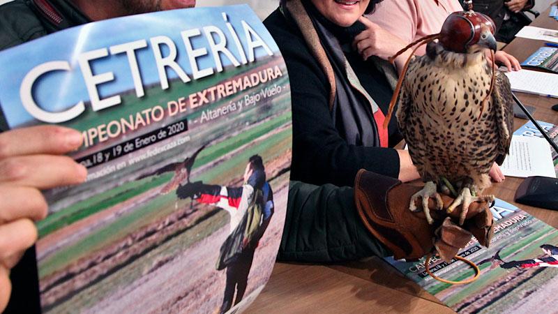 VI Campeonato de Extremadura de Cetrería en Llerena