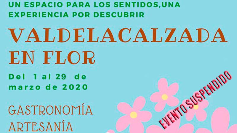 XVII Valdelacalzada en Flor