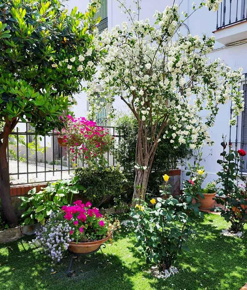 Primer premio de decoración de jardines, de Esperanza Gallardo. Foto: Cedida